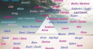 نام و نام خانوادگی به مجاری