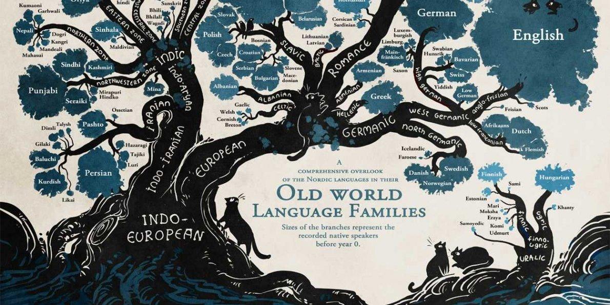 ریشه زبان مجاری